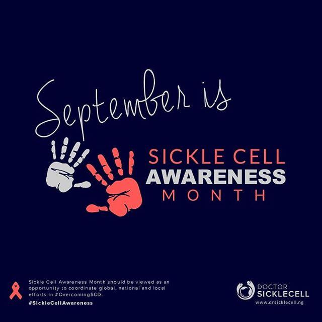 sc awareness